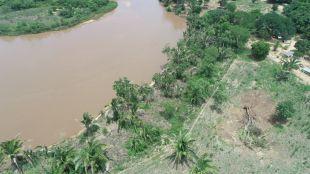 PMA autua pecuarista por desmatamento ilegal e apreende máquina de esteira em Coxim