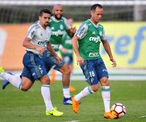 Classificado e pressionado, Palmeiras joga por melhor campanha