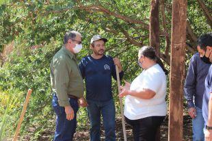 Vereador-presidente Averaldo Barbosa sugere incluir sementes de pastagens ao Programa AgroRica